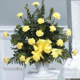 Yellow Tribute