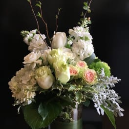 Sympathy And Funeral Flowers Delivery Albany Momo S