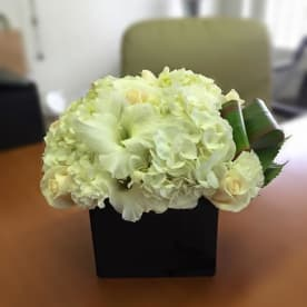 Send Flowers El Paso Tx Flower Delivery Bloomnation