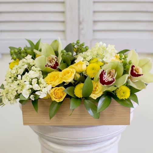 Newton Florist Flower Delivery By Busy Bee Flowers