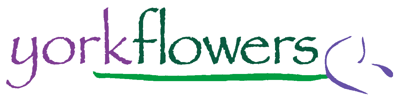 Washington & Annapolis Florist | Flower Delivery by York Flowers