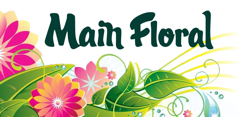 Anoka Florist | Flower Delivery by Main Floral
