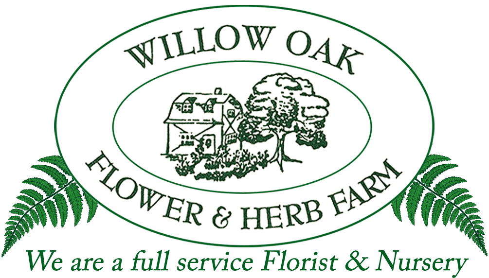 SEVERN Florist | Flower Delivery by Willow Oak Flower & Herb Farm