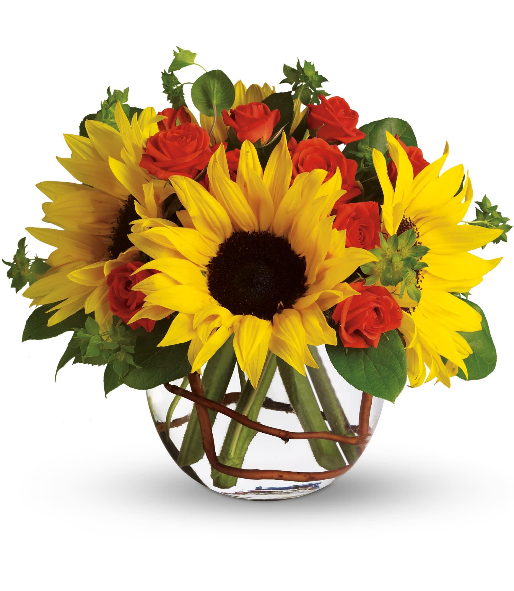 Sunny Sunflowers In Metuchen Nj Gardenias Floral