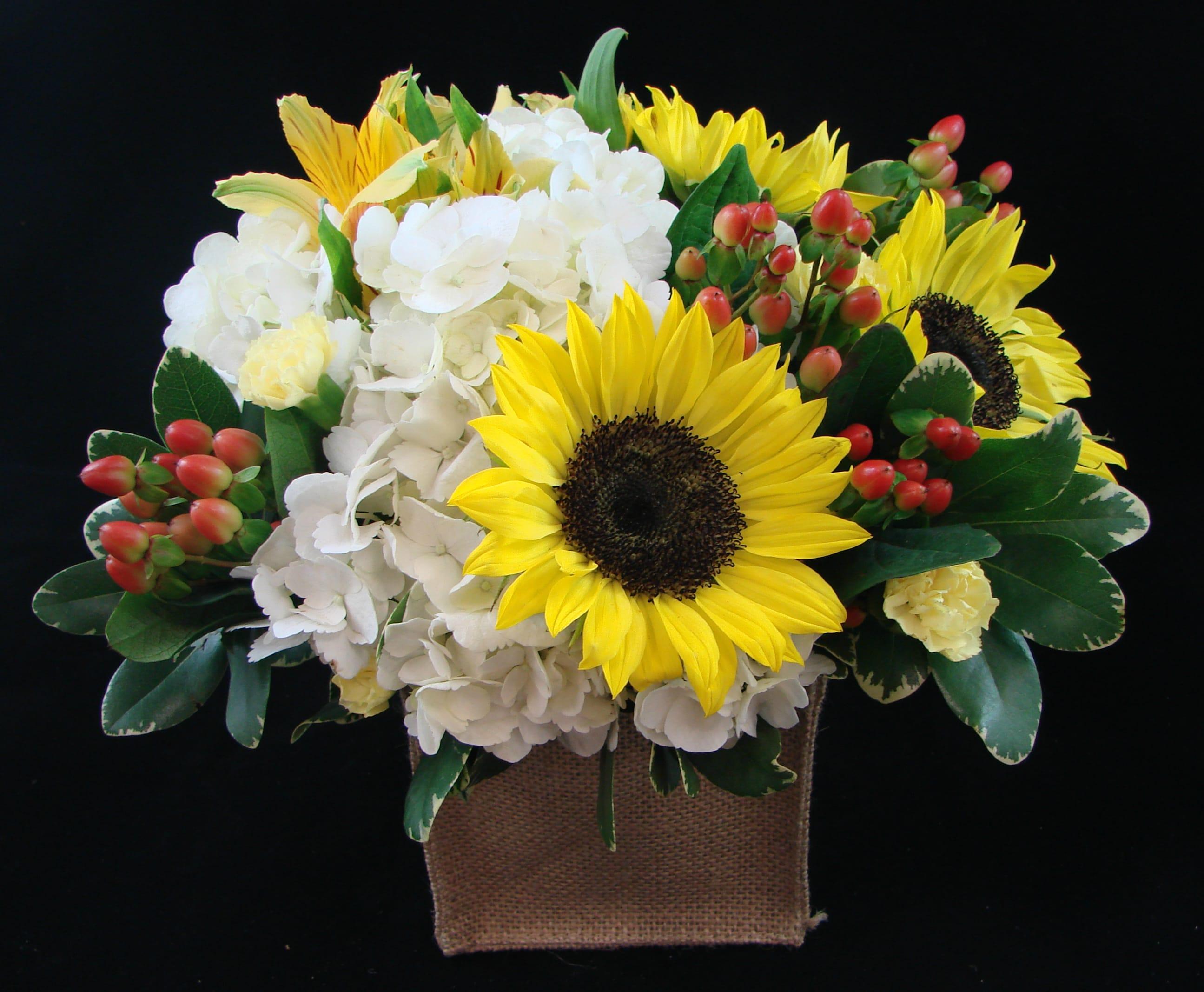 Country Sunshine In Metuchen Nj Gardenias Floral