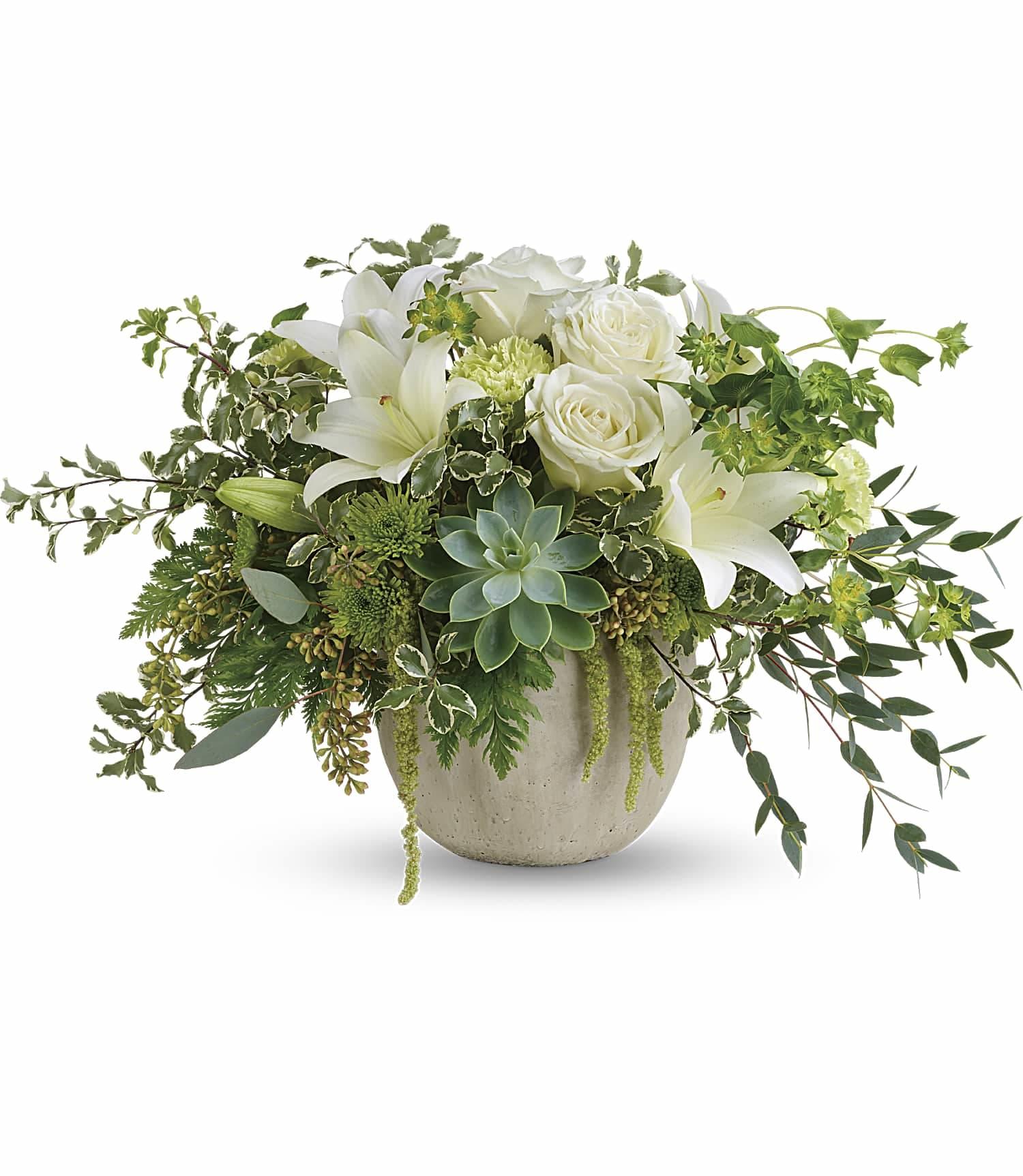 Flourishing Beauty In Metuchen Nj Gardenias Floral