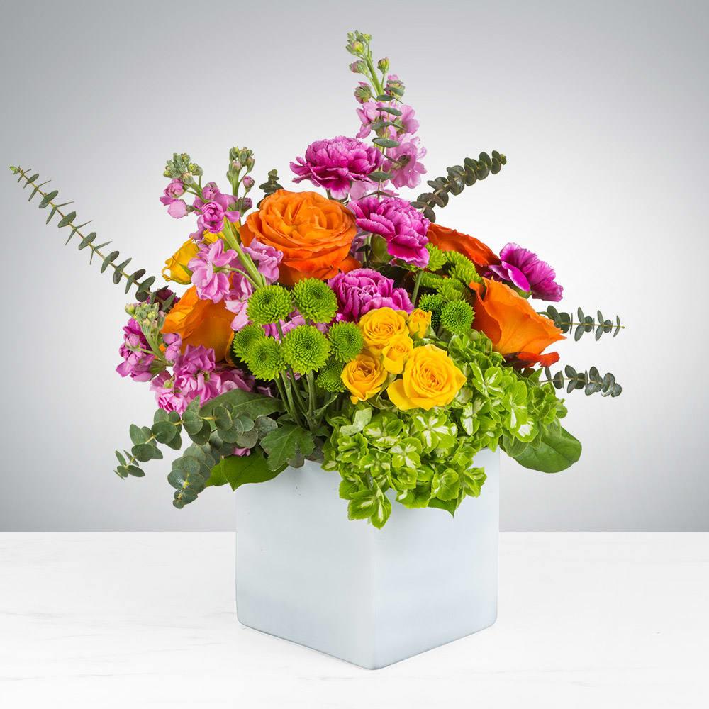 Va Va Bloom In Metuchen Nj Gardenias Floral