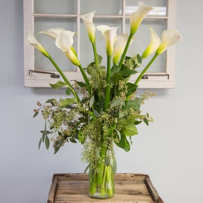 Tall White Calla Lily Vase In San Diego Ca House Of Stemms