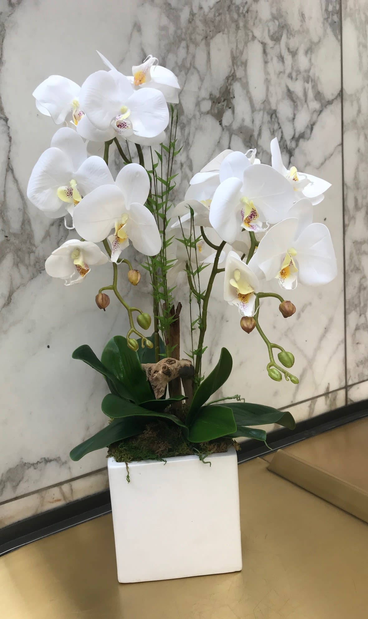 Artificial Silk Orchid Double In Los Angeles Ca Downtown Flowers Net