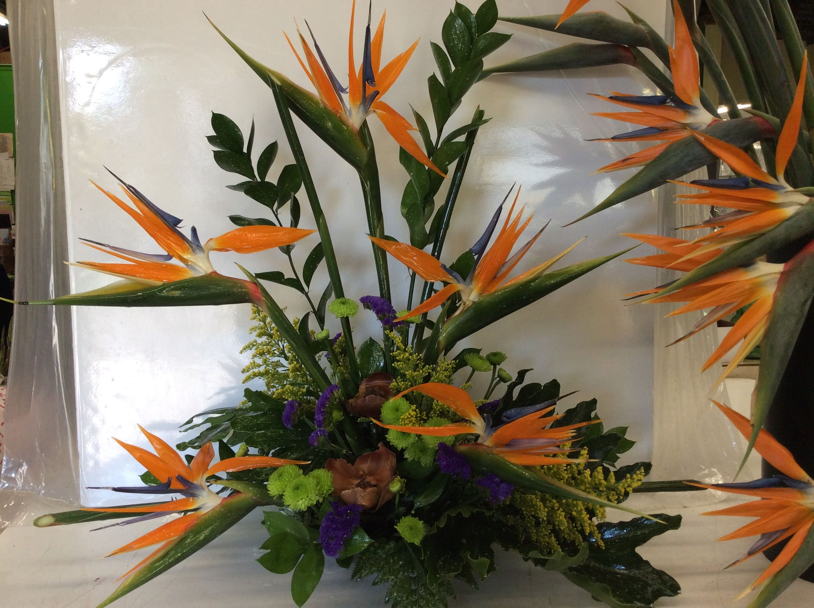 Tropical Bird Of Paradise Stylized Arrangement By Accent Florist Shop nearly natural tropical arrangements of silk tropical flowers; tropical bird of paradise stylized arrangement by accent florist