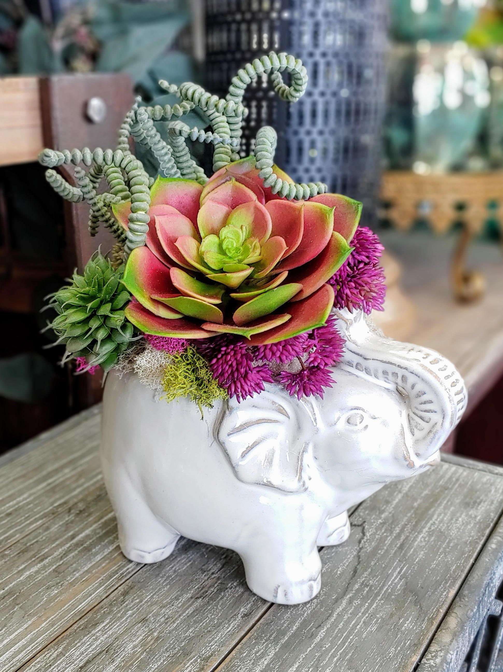 Elephant Faux Succulent Arrangement In Las Vegas Nv Windmill Floral Expressions