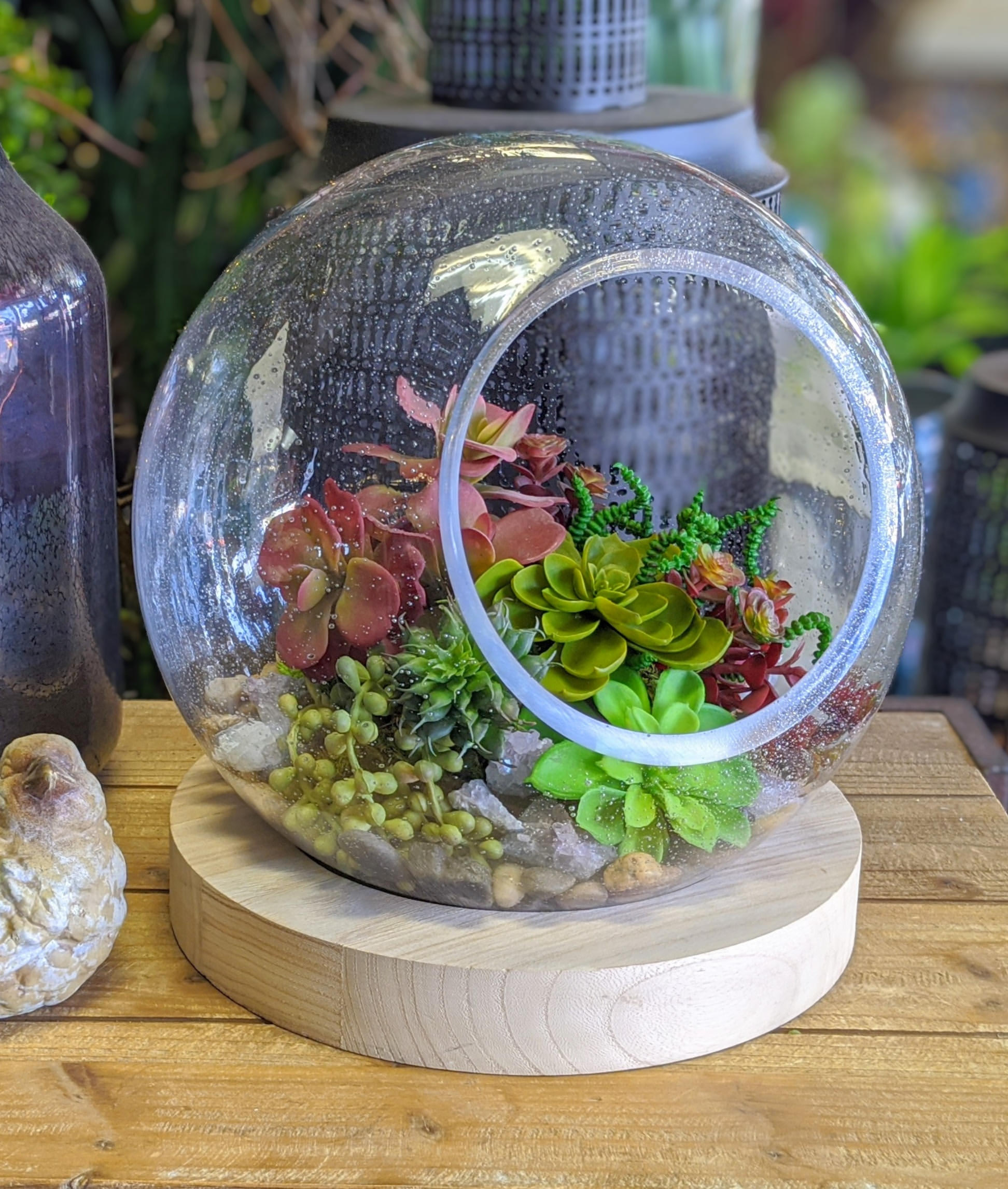 Faux Succulents In Glass Terrarium With Wood Base In Las Vegas Nv Windmill Floral Expressions