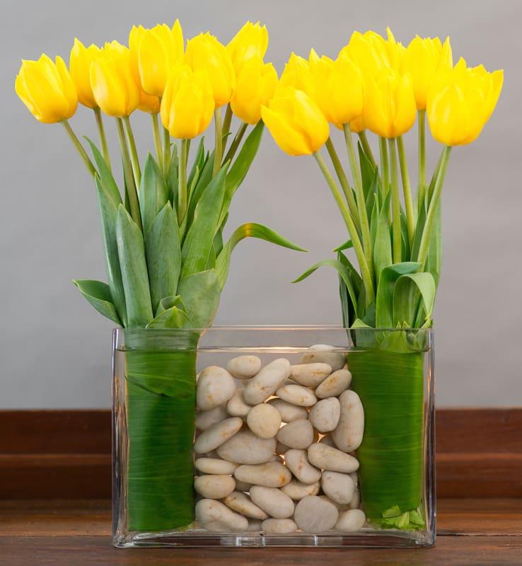 Modern Dutch Tulips In Culver City Ca Sada S Flowers