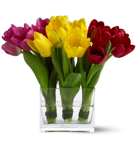 Tulip Trio Tfweb404 In Newport Beach Ca Newport Florist