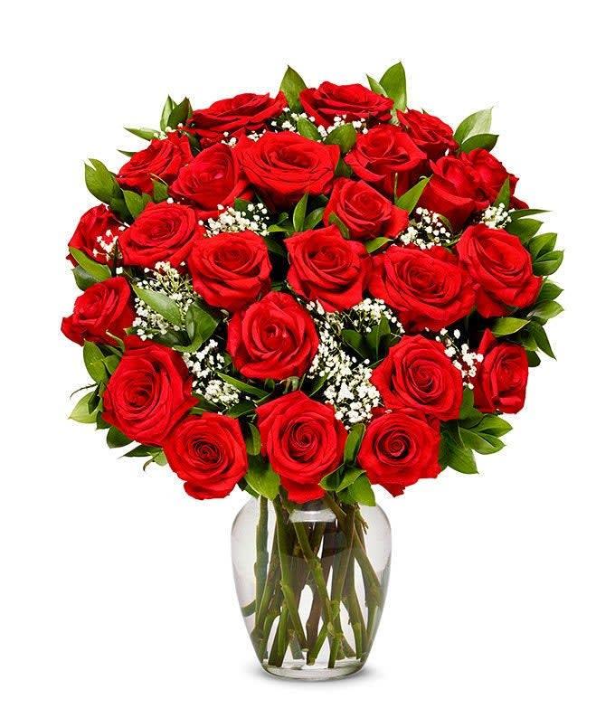 Two Dozen Long Stemmed Red Roses In Greenville Sc Flowers By Mcclain Llc