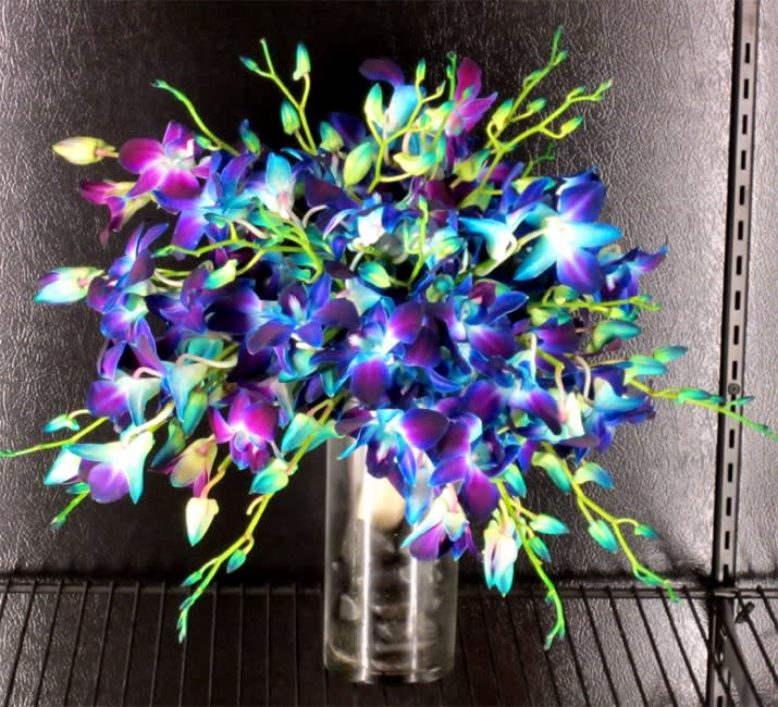 Blue Orchids Bridal Bouquet By House Of Stemms
