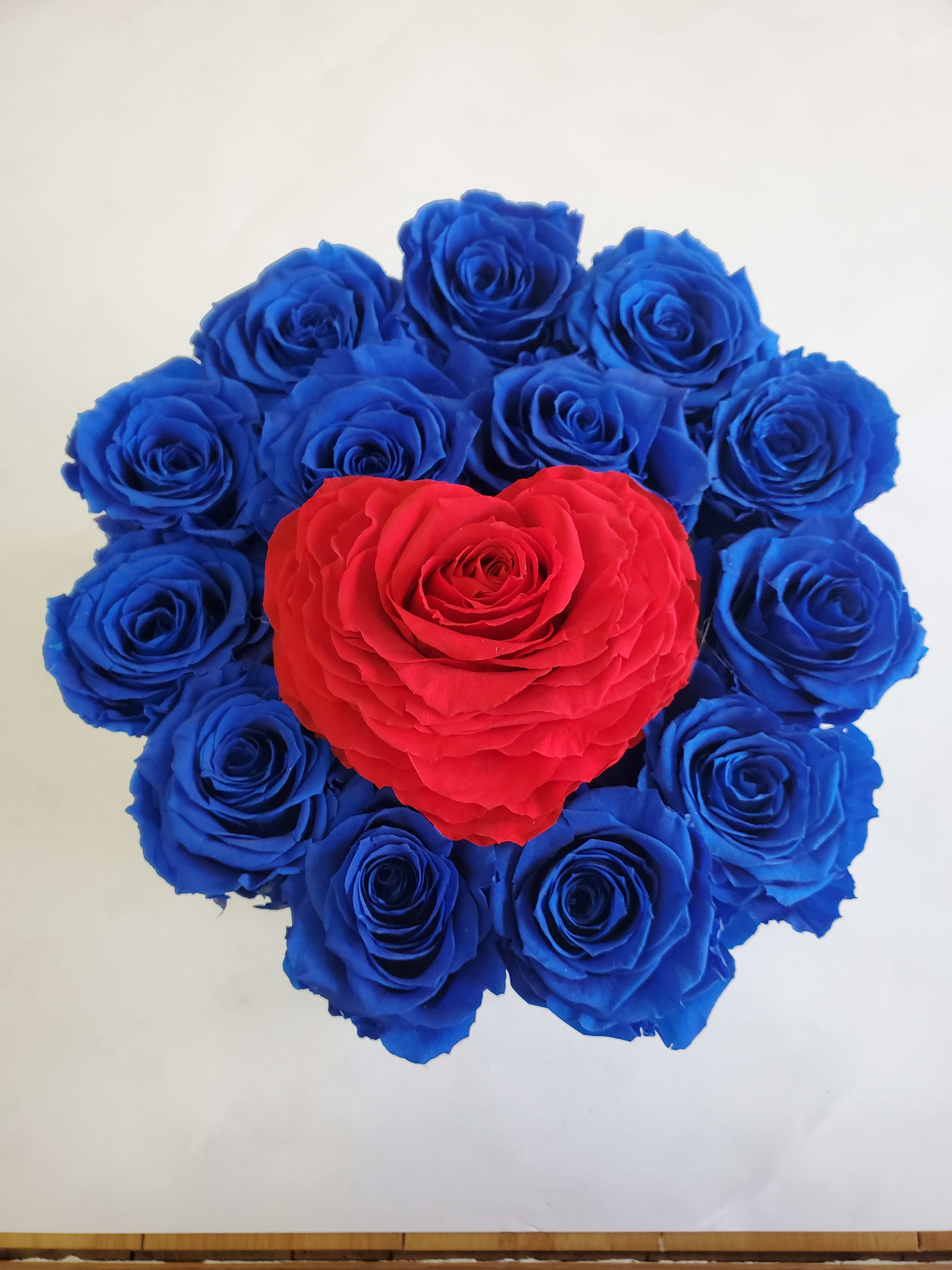 Eternity Roses Royal Blue And Red In Bronx Ny Worldtheroses Com