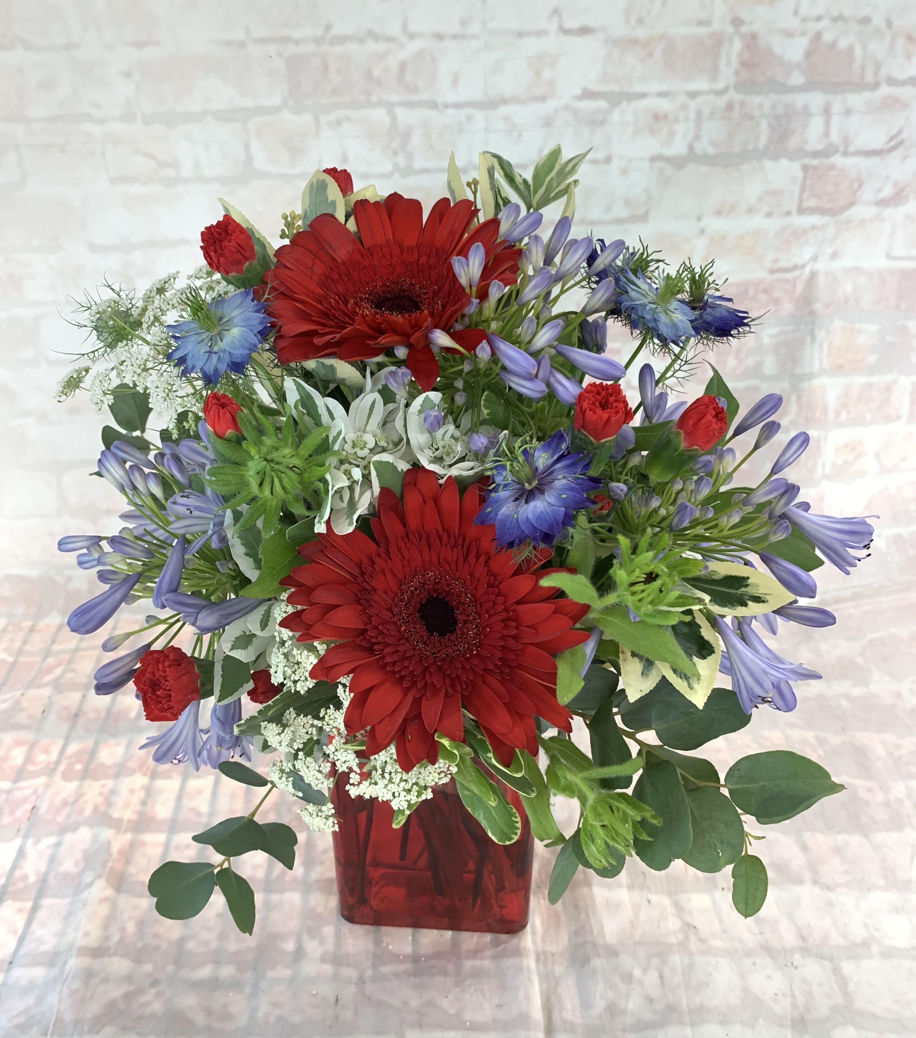 Red White And Blue In Davis Ca Strelitzia Flower Company