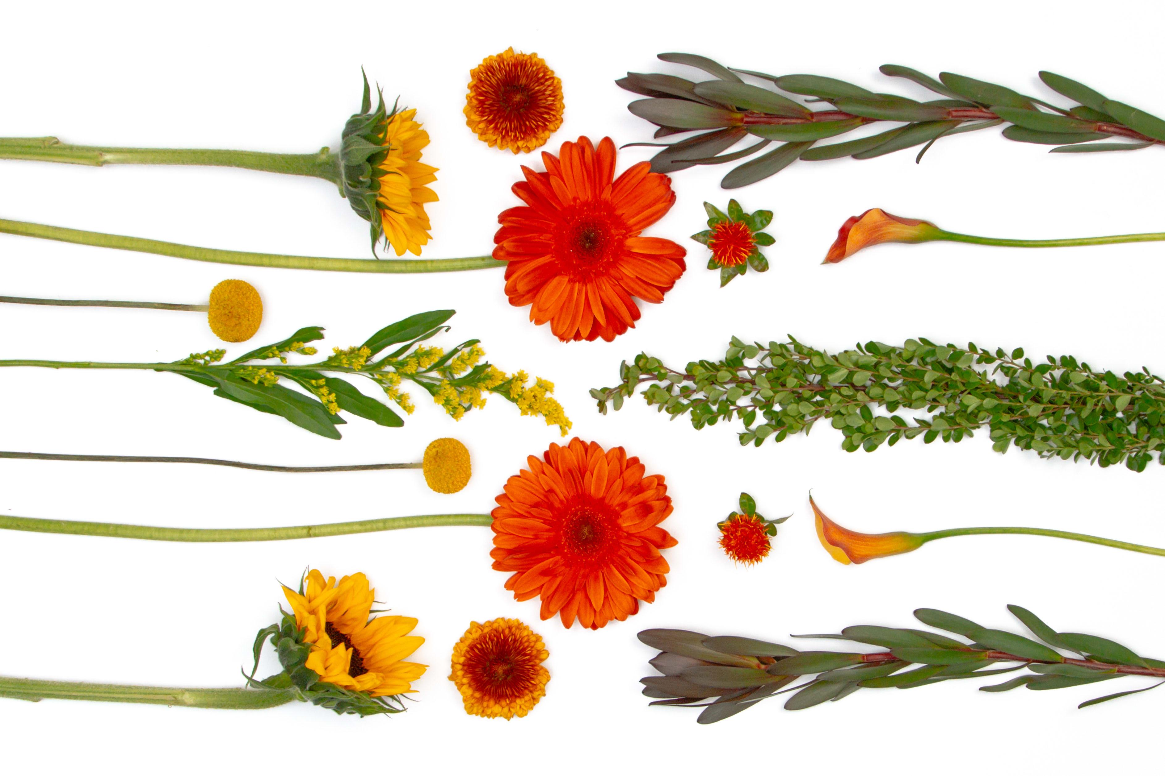 Designer S Choice In Fall Colors In Kansas City Mo Westport Floral Designs