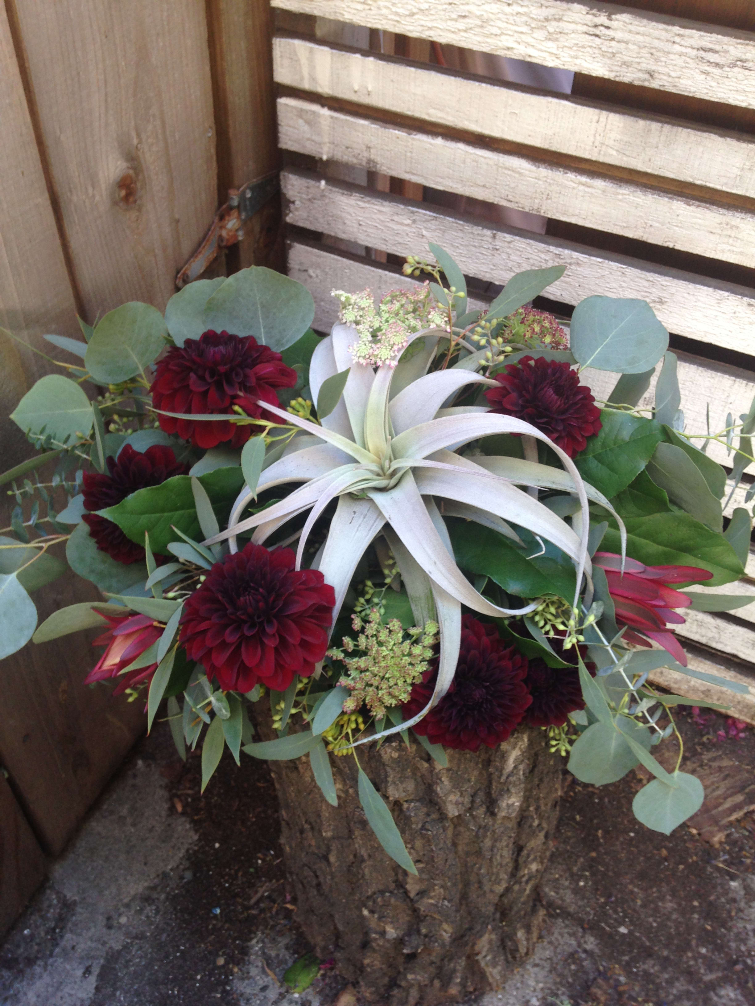 Air Plant Bridal Bouquet By Flowers Of The Valley