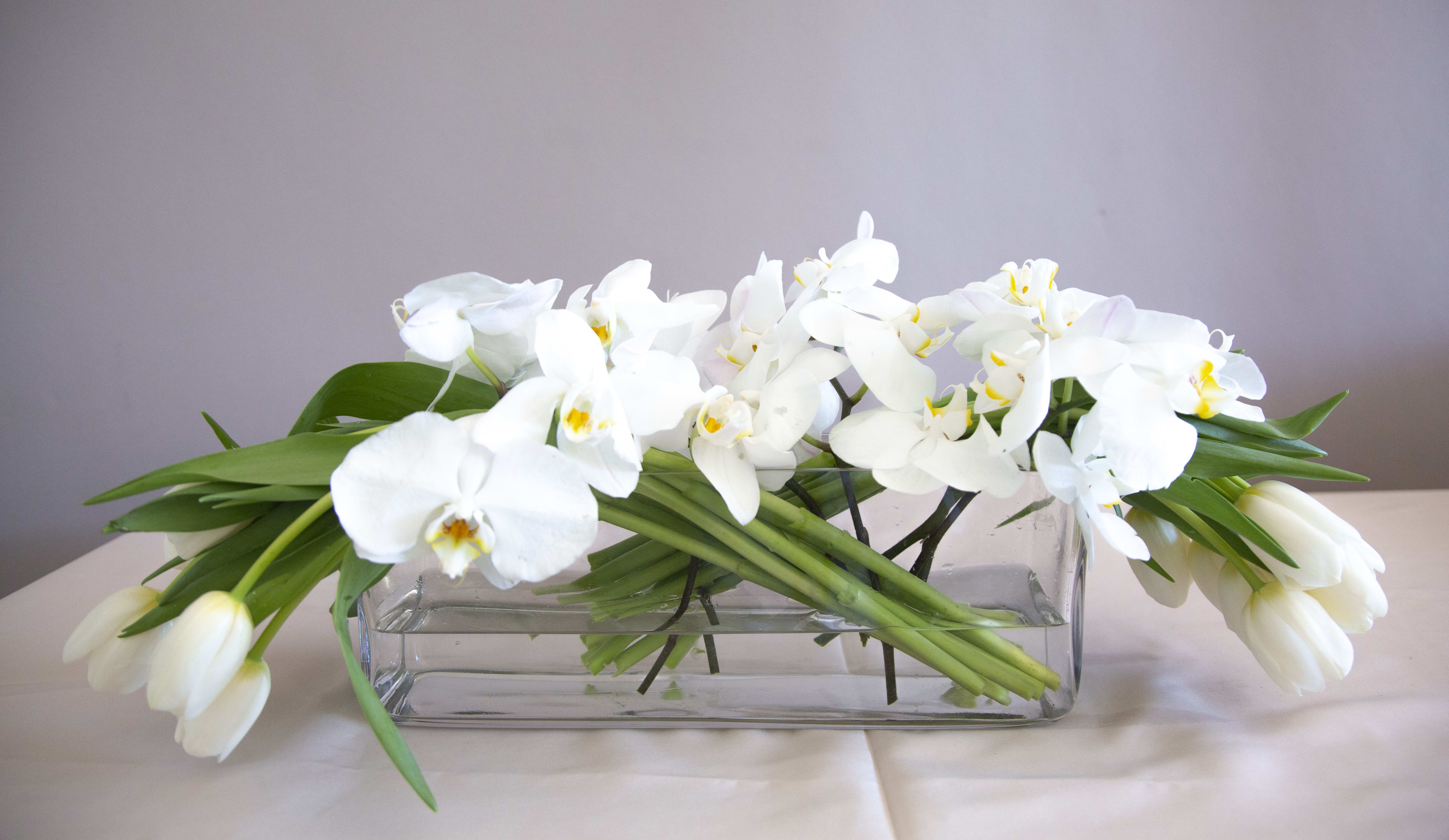 Blanc By Dolce Fiore