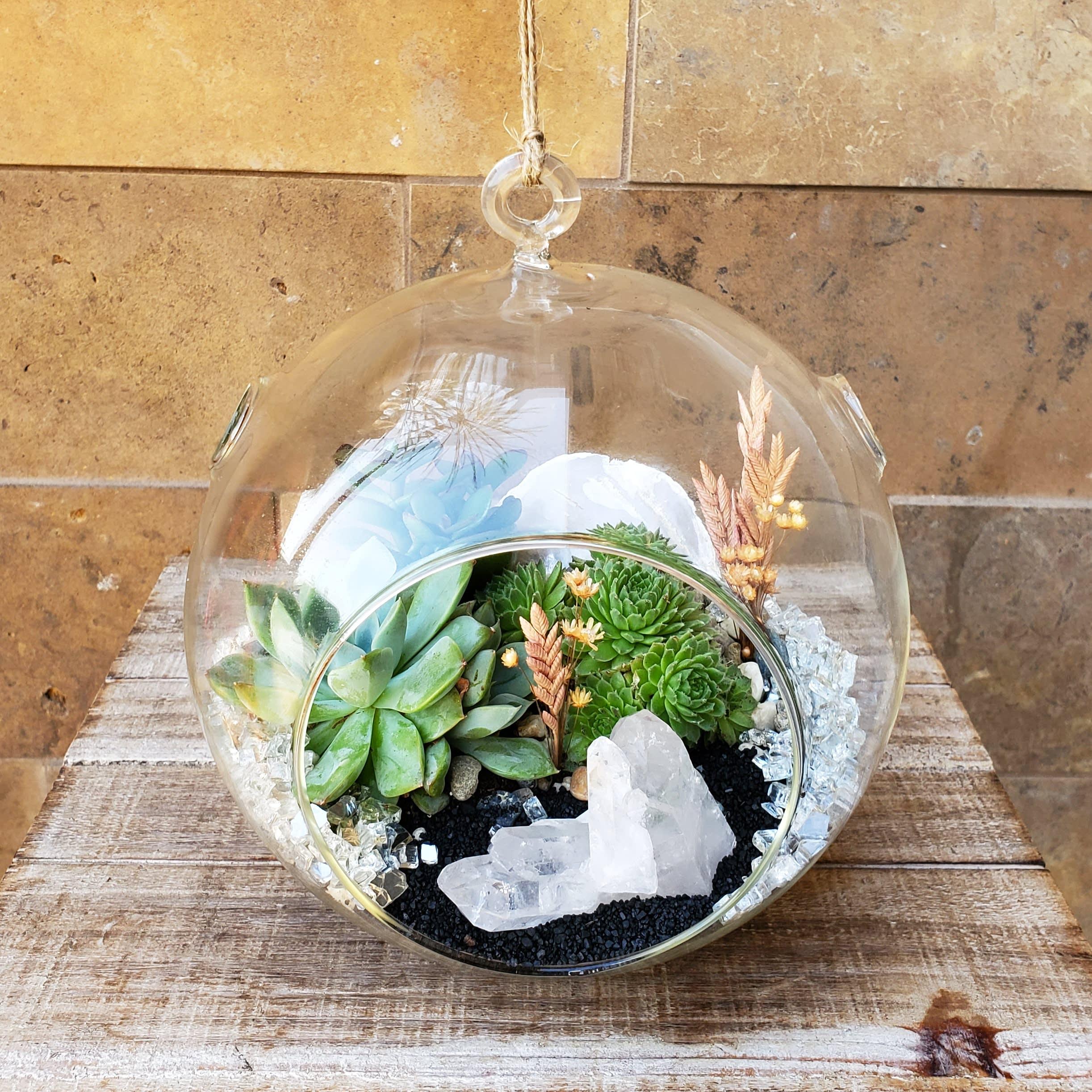 Crystal Magic Hanging Terrarium In San Mateo Ca Blossoms And Botanicals